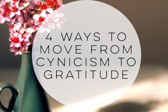 4 Ways to Move from Cynicism to Gratitude